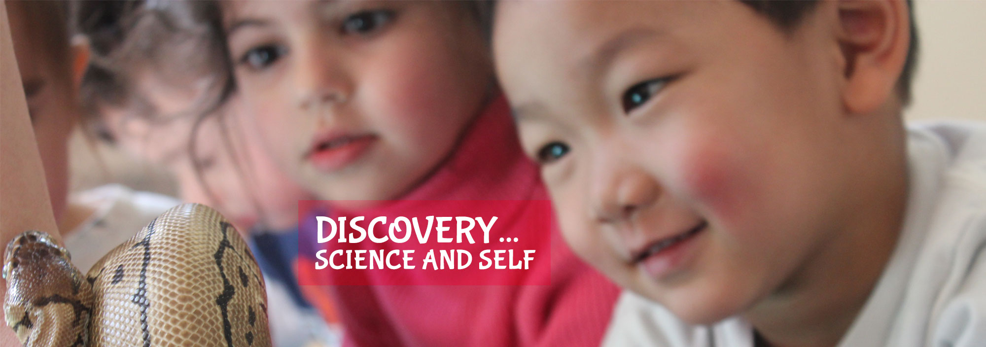 Discovery... Science and Self
